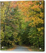 New England Road Acrylic Print