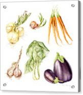 New Farmers Market Study Acrylic Print