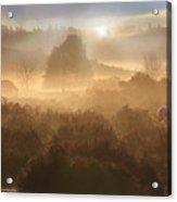 New Forest Dawn Acrylic Print