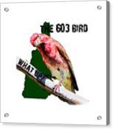 New Hampshire State Bird The Purple Finch Acrylic Print