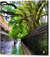 New Orleans French Quarter Paint  Acrylic Print
