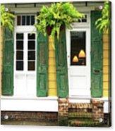New Orleans Row House Plants Acrylic Print
