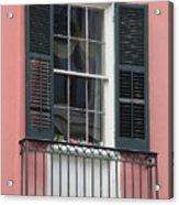 New Orleans Windows 4 Acrylic Print