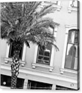 New Orleans Windows - Black And White Acrylic Print