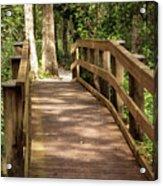 New Wood Bridge Park Trail Acrylic Print
