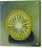 New Zealand Kiwi Acrylic Print