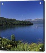 New Zealand, Rotorua Acrylic Print