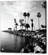 Newport Beach Jetty Acrylic Print by Paul Velgos