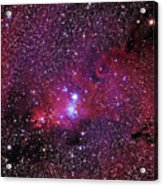 Ngc 2264 The Christmas Tree Cluster In Monoceros Acrylic Print