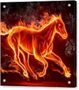 Nice Horse 3d Acrylic Print