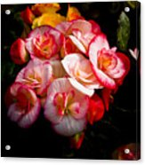 Night Begonias Three Acrylic Print