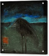 Night Bird With Red Square Acrylic Print