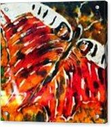 Night Butterfly Acrylic Print