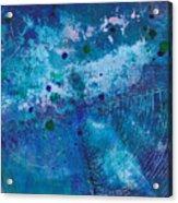 Night Echo Acrylic Print