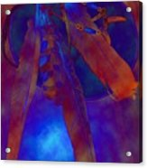 Night Feathers   -019 Acrylic Print