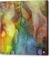 Waking Dream  Acrylic Print