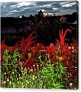 Night Garden Series 3 Acrylic Print