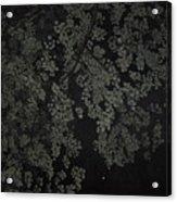 Night Leaves II Acrylic Print