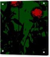 Night Magic Flowers Acrylic Print