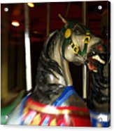 Night Mares At The Central Park Carousel 3 Acrylic Print
