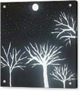 Night Of Lights Acrylic Print