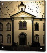 Night Of The Birds . Sepia . 7d12487 Acrylic Print