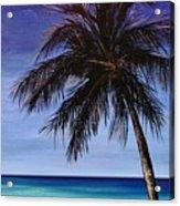 Night On The Beach Acrylic Print
