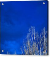 Night Sky Acrylic Print by Steve Gadomski