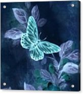Nightglow Butterfly Acrylic Print