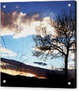 Nightsky Acrylic Print