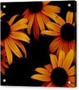 Nighttime Flowers Acrylic Print