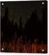 Nighttime Meadow  Acrylic Print