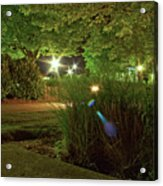 Nighttime Path Acrylic Print