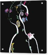 Nightvision - Fantasy Acrylic Print