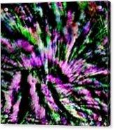 Nite Blooms Acrylic Print