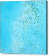 Sea Salt Acrylic Print