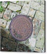 Nola Watermeter Acrylic Print