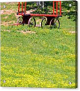 None Of Your Red Wagon Acrylic Print