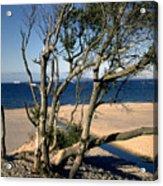 Nordic Beach Acrylic Print
