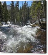 North Fork Middle Boulder Creek  Acrylic Print