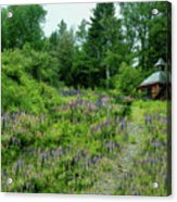North Country Nod To Monet Acrylic Print