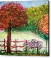 North Fence Acrylic Print