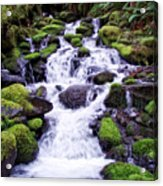 North Umpqua Wild And Scenic River Acrylic Print