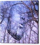 North Wind Acrylic Print