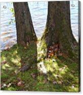 North Woods Lake One Acrylic Print