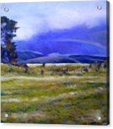 Northeast Tasmania Australia 1995  Acrylic Print