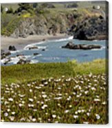 Northern California Coast Scene Acrylic Print
