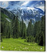 Northern Cascades In Washington State    Mount Ruth Acrylic Print by Brendan Reals