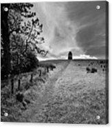 Northern Ireland 35 Acrylic Print