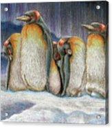Northern Lights - Goodnight Acrylic Print